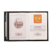 Обложка для паспорта и автодокументов ОВ-3